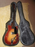 Guitar in Case